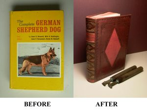 Book Rebound in Leather